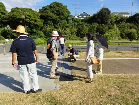 カニの道作り現場検証 in せんなん里海公園_c0108460_1355436.jpg