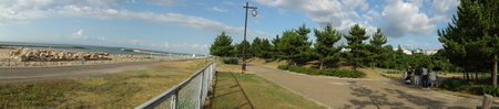 カニの道作り現場検証 in せんなん里海公園_c0108460_1402164.jpg
