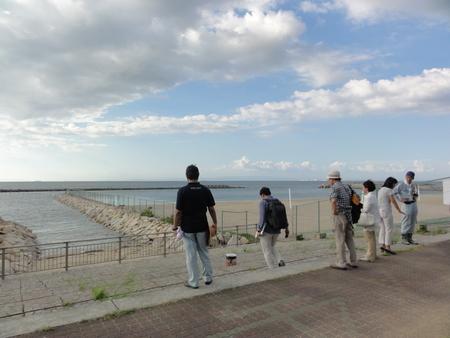 カニの道作り現場検証 in せんなん里海公園_c0108460_1404747.jpg