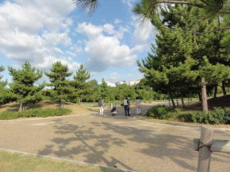 カニの道作り現場検証 in せんなん里海公園_c0108460_14545100.jpg