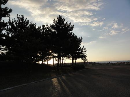 せんなん里海公園陸ガニ生態調査サポート_c0108460_2292082.jpg