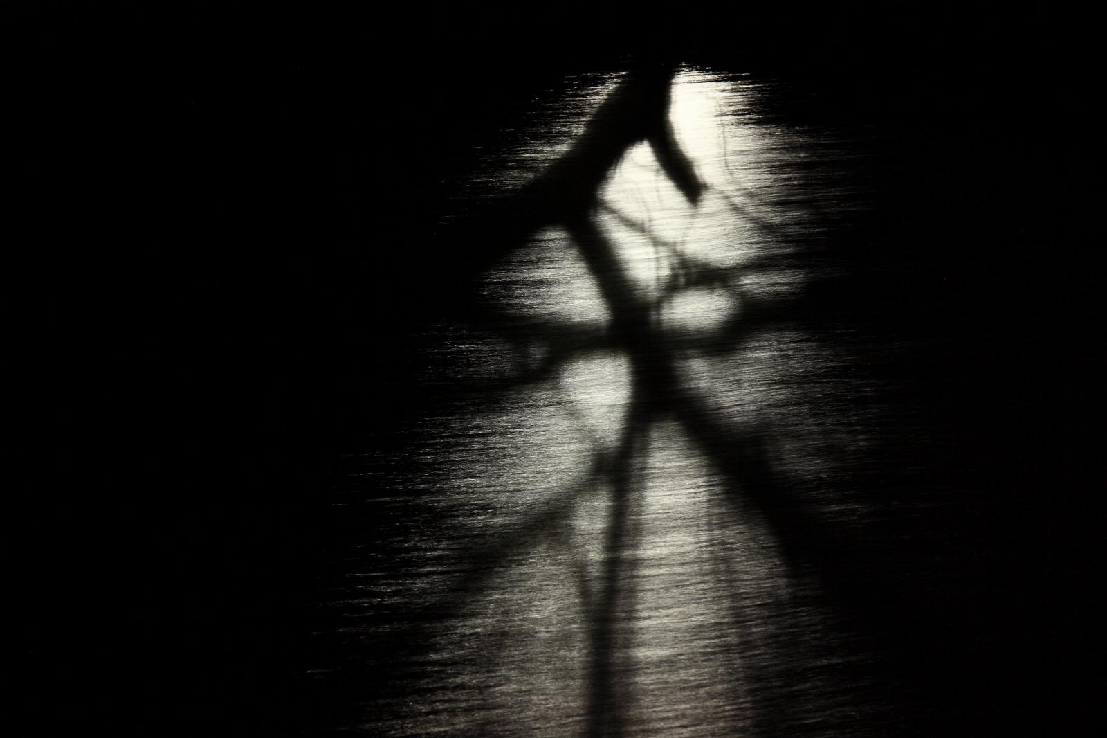 shadow_b0177584_23171934.jpg