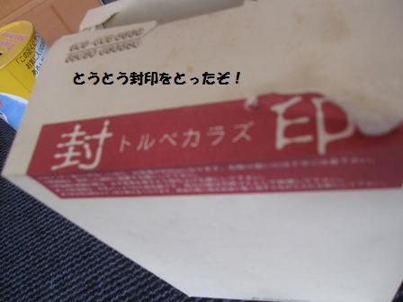 f0212597_10172594.jpg
