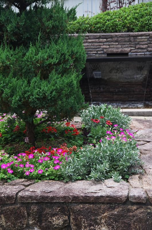 花ざかりの庭(神戸・北野異人館)_f0155048_10562295.jpg