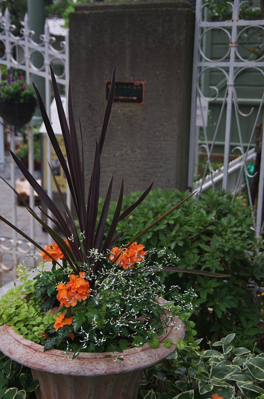 花ざかりの庭(神戸・北野異人館)_f0155048_1058269.jpg