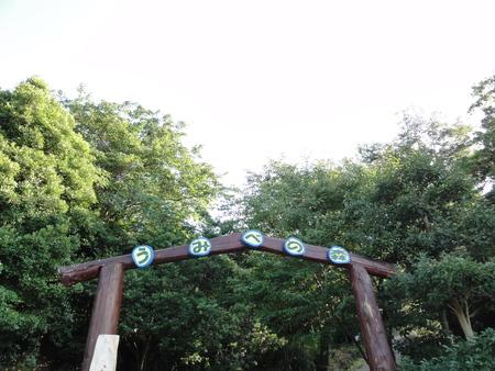 せんなん里海公園陸ガニ生態調査サポート第3回目_c0108460_0362442.jpg