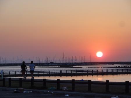 せんなん里海公園陸ガニ生態調査サポート第3回目_c0108460_0491717.jpg