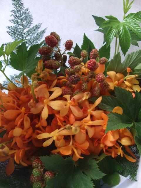 オークリーフ(オレンジ色のモカラの花束)_f0049672_10574710.jpg