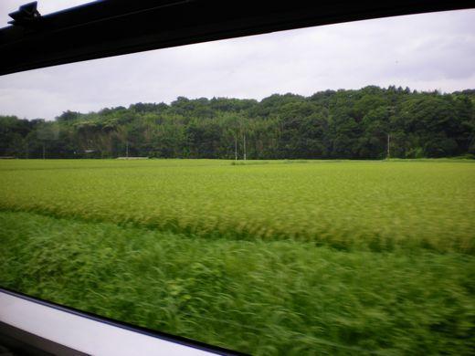 真夏の中国地方ローカル線7 (芸備線)_b0005281_14403595.jpg