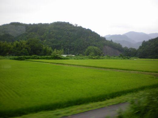 真夏の中国地方ローカル線7 (芸備線)_b0005281_14435167.jpg