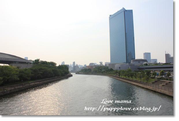 大阪めちゃ好きやねん。続き。_b0136683_9555131.jpg