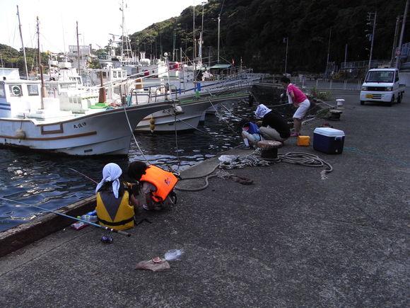 伊豆大島お魚の旅 120728~29_c0237483_1203687.jpg