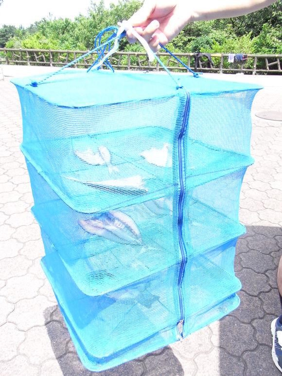 伊豆大島お魚の旅 120728~29_c0237483_1283837.jpg
