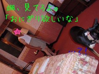 d0179488_2256526.jpg