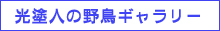 f0160440_1352294.jpg