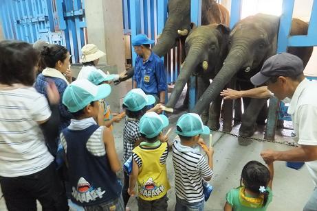 とべ動物園の素晴らしさを伝えていかなきゃ_e0272869_21242697.jpg