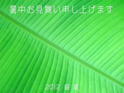 b0067481_14554752.jpg