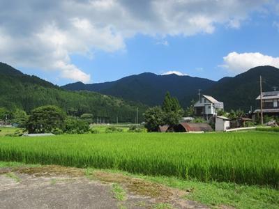 鯖街道、敦賀へ行ってきました_e0201281_23444844.jpg
