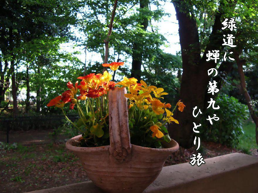 f0137096_2140449.jpg