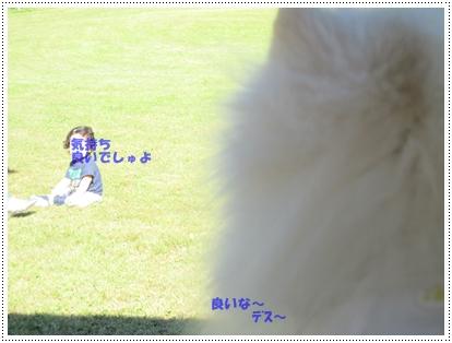 b0167519_1611211.jpg