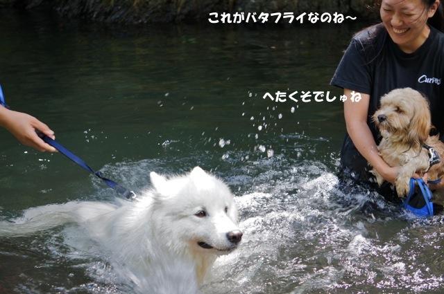f0234023_22495472.jpg