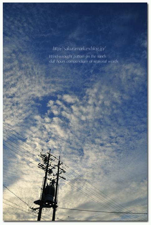 8月、朝の空。_f0235723_132101.jpg
