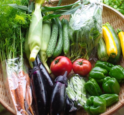 今週の野菜セット(8/7~8/11着)_c0110869_1337922.jpg
