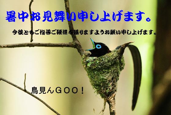 d0157380_18253437.jpg