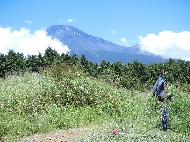 毎年夏の体力・精神修行? 富士山国有林の下刈り_f0141310_655316.jpg
