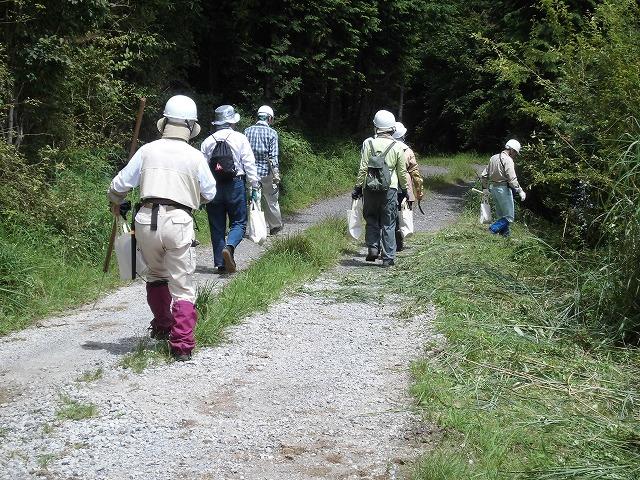 毎年夏の体力・精神修行? 富士山国有林の下刈り_f0141310_6585854.jpg