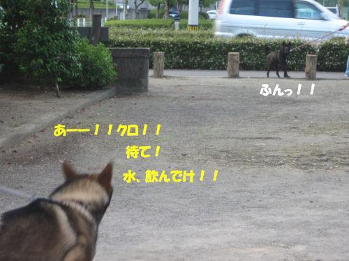 f0143123_20101889.jpg