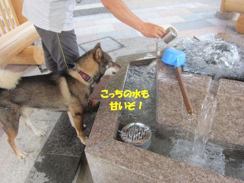 f0143123_2092061.jpg