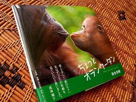 岩合さんの「世界ネコ歩き」_d0162535_16513572.jpg