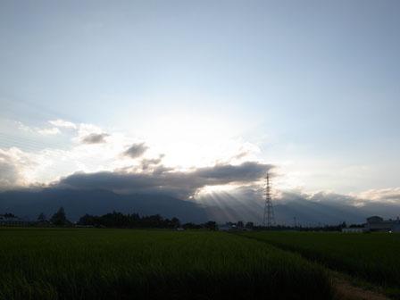 火曜日の帰り道_a0014840_2313199.jpg