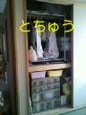 b0003855_71344.jpg