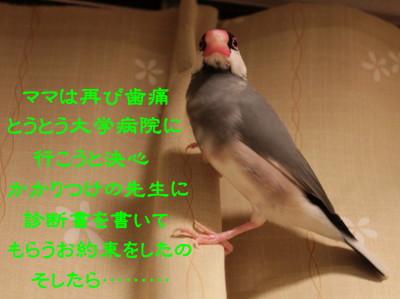 b0158061_21173714.jpg