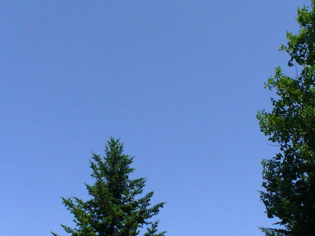 8/7 雨が降ったり涼しくなったり_a0140584_1410596.jpg