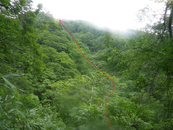 2012.08.07(火) 氷ノ山藪ビヤ~ン_a0062810_8483047.jpg