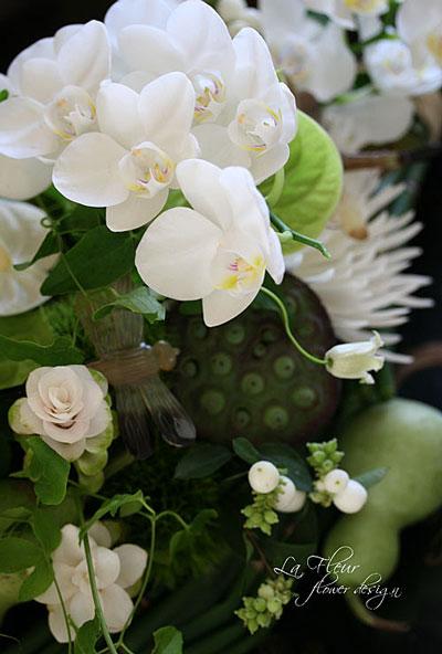 exotique fleur_f0127281_23335373.jpg
