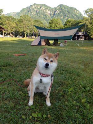 キャンプ3日目_a0126590_7533534.jpg