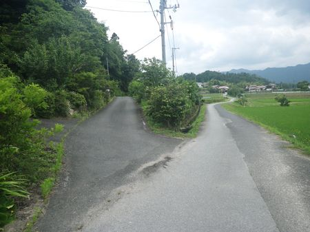 THE WALKING PEOPLE no9_d0089494_194691.jpg