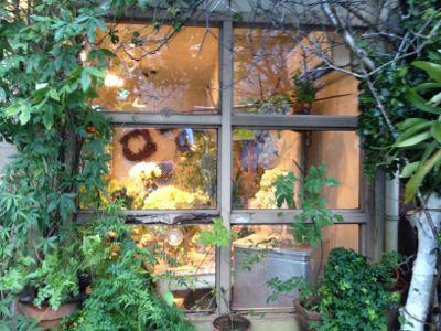 大好きな青山のお花屋さんヾ(@⌒ー⌒@)ノ_a0213806_1763018.jpg