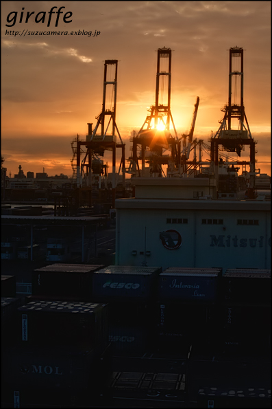 港のキリン_f0100215_23554991.jpg