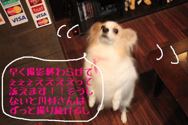 募集でぇ~~~す!!_b0130018_010451.jpg