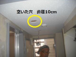f0031037_2037165.jpg