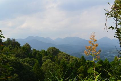天神山プチ登山&富久樹園カフェ_e0228938_18241715.jpg