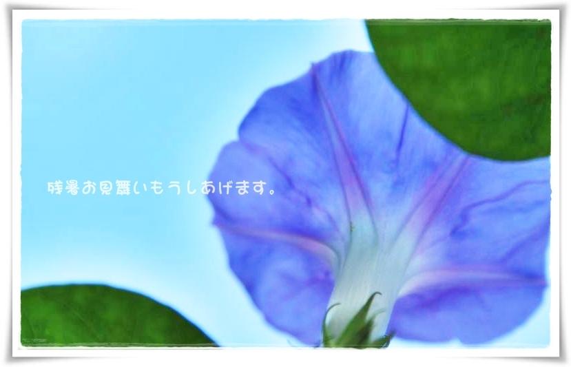 c0145250_15233364.jpg