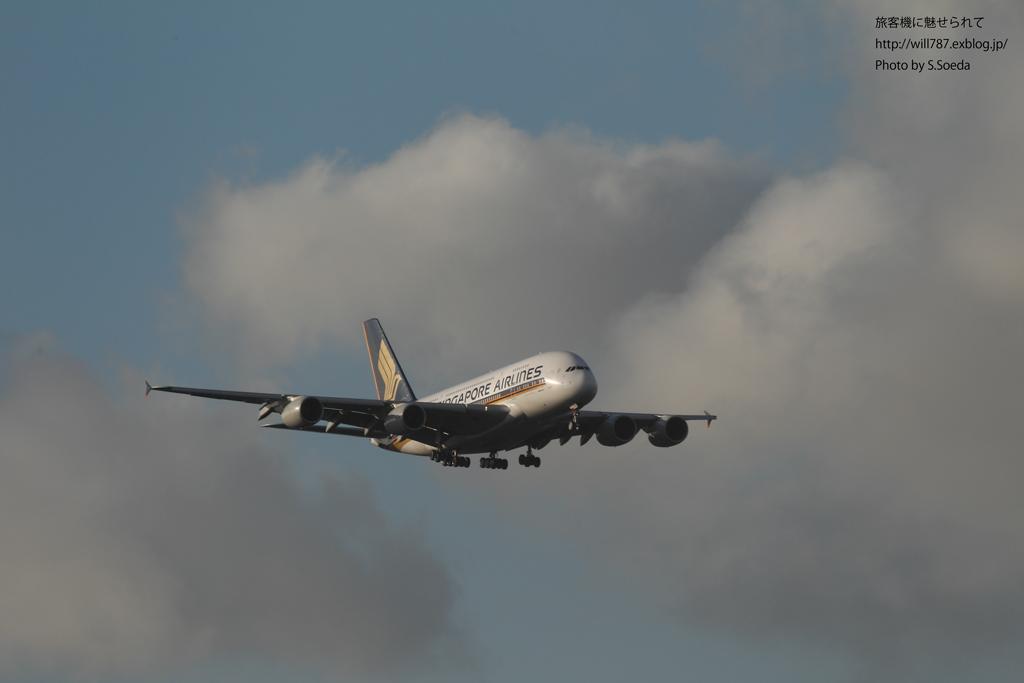 8/10 成田エクセルホテル東急より@A380_d0242350_10394671.jpg