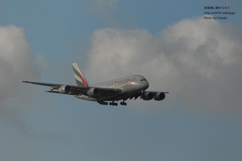 8/10 成田エクセルホテル東急より@A380_d0242350_11412523.jpg