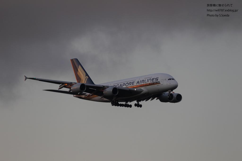8/10 成田エクセルホテル東急より@A380_d0242350_1146753.jpg